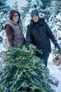 gallery-2016-winter-christmas-tree_03